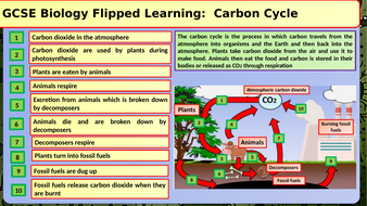 GCSE-Biology-Carbon-Cycle-Flipped-Learning.pptx