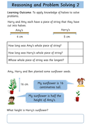 preview-images-year-2-halves-worksheets-18.pdf