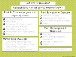 B2-Food-Tests.pdf