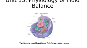 Animal cell components - powerpoint