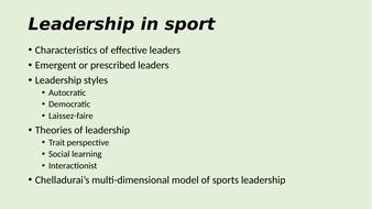 Leadership-in-Sport.pptx