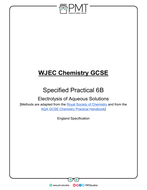 SP-6B---Electrolysis-of-Aqueous-Solutions.pdf