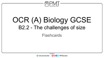 Flashcards---Topic-2.2-The-challenges-of-size---OCR-(A)-Biology-GCSE.pdf