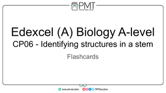 Flashcards---CP-06-Identifying-structures-in-a-stem---Edexcel-(A)-Biology-A-level.pdf