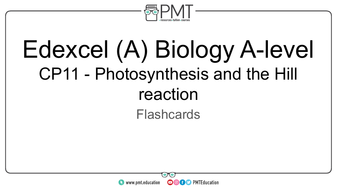Flashcards---CP-11-Photosynthesis-and-the-Hill-reaction---Edexcel-(A)-Biology-A-level.pdf