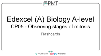 Flashcards---CP-05-Observing-stages-of-mitosis---Edexcel-(A)-Biology-A-level.pdf
