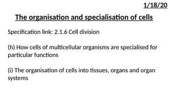 L4-The-organisation-and-specialisation-of-cells.pptx