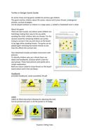 Turtles_in_Danger_Game_Guide.pdf