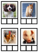 CVC-Spell-Cards.pdf