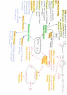 3.11-ATP.pdf