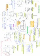 3.3-Carbohydrates-side-1.pdf