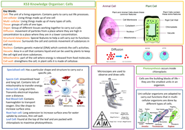 KS3-Knowledge-Organiser---Cells.pdf