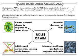 A-Level-PH-ABA-Summary-Sheet.pdf