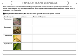A-Level-Types-of-Plant-Responses-WS.pdf