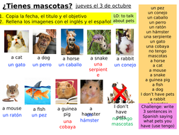 Year-7-Spanish-Module-1-Week-4-Lesson-1-Pets.pptx