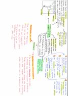 7.4-side-1.pdf