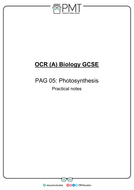 PAG-5---Photosynthesis.pdf