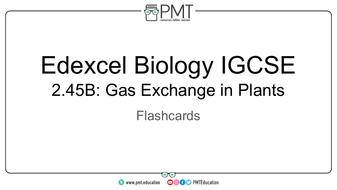 Flashcards---Gas-Exchange-in-Plants---Edexcel-Biology-IGCSE.pdf