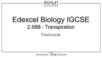 Flashcards---Transpiration---Edexcel-Biology-IGCSE.pdf