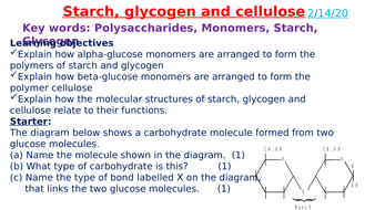 Starch, glycogen and cellulose