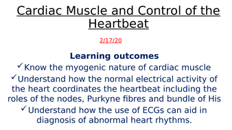 Cardiac-Muscle-and-Control-of-the-Heartbeat.pptx