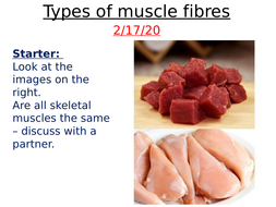 Different-types-of-muscle-fibres.pptx