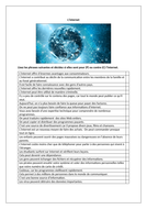L'internet / Internet / Advantages and disadvantages of the internet