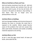 Effects-of-Acid-Rain.docx