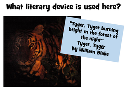 preview-images-literary-devices-powerpoint-22.pdf