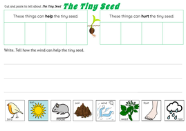 The-Tiny-Seed-Activities.pdf