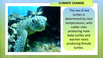 preview-images-climate-change-31.pdf