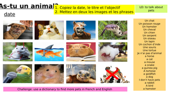 Year-7-French-Access-Studio-Lesson-6-pets.pptx