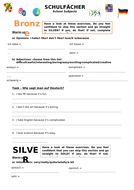 Bronze-Silver-Gold-Worksheet.docx