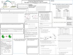 Enzyme Activity Temperature pH Revision Sheet GCSE