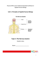 The Nervous System for Applied Human Biology BTEC Level 3