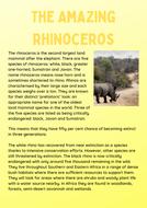 The-Amazing-Rhinoceros-Y6.pdf