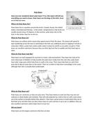 polar-bears-lesson-1-text-B.docx