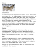 wolves-lesson-1-text.docx