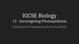IGCSE-Biology-Lecture-13_-Investigating-Photosynthesis.pptx