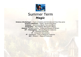 Summer-Term-Topic-Planning-new.doc