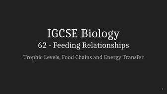 IGCSE-Biology-Lecture-62_-Feeding-Relationships.pptx