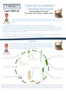 Grains-worksheet.pdf