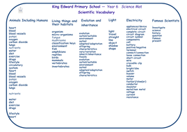 Year-6-Science-mat.pdf