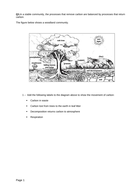 respiration-and-photosynthesis-MIB-question.docx