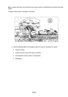 respiration-and-photosynthesis-MIB-question.pdf