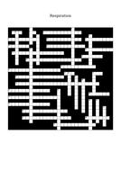 7.-Respiration-crossword.docx