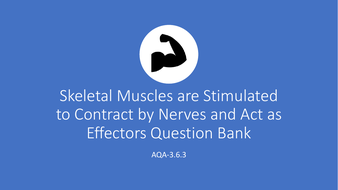 3.6.3-Skeletal-muscles-are-stimulated-to-contract-by-nerves-and-act-as-effectors-.pdf