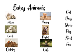 Puppies-and-Kittens-and-other-Baby-Animals.pdf