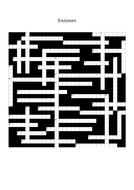 Enzymes-Crossword.docx