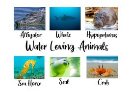 Water-Loving-Animals.pdf